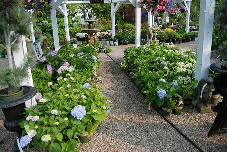 Churchill's Garden Center - Nursery